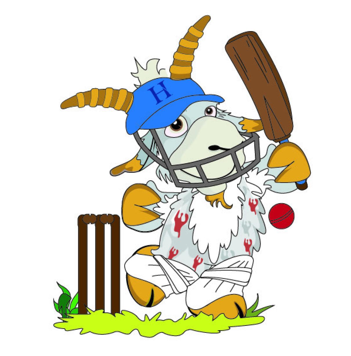 Haberdashers cricket